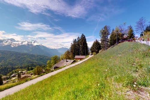 Terrain au calme et avec vue panoramique à Chesières-Villars