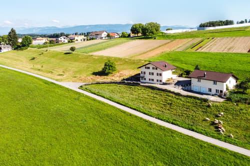 Belle villa + appartement de 2.5 pièces + annexe + terrain agricole