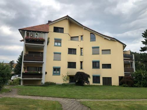 familienfreundliche Maisonettewohnung an bester Lage im Herzen von Neftenbach (1)