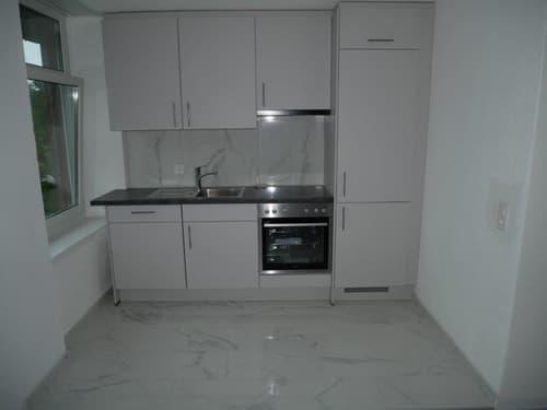 Neu renovierte 1.5-Z-Wohnung zu vermieten