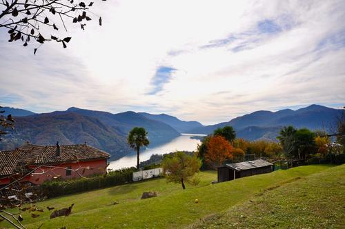 Terreno Edificabile di 1'150 mq con Vista Lago di Lugano a Vernate