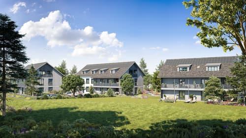Ansprechende 3.5 Zimmer-Eigentumswohnung mit grosszügigem Balkon (1)
