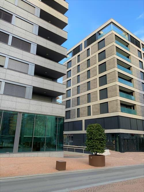 Nuovi uffici di diverse superfici in affitto in centro a Paradiso