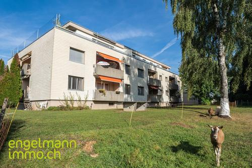 2 Zimmer-Wohnung / Appartement de 2 pièces