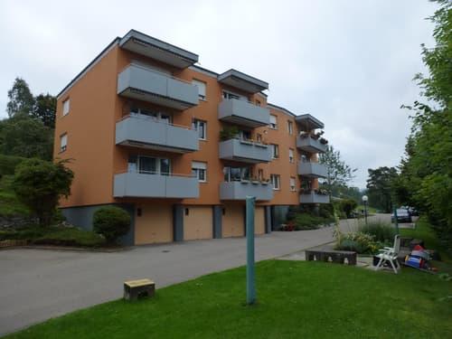 Neu sanierte 4-Zimmerwohnung mit Alpenblick - 1. Monat gratis