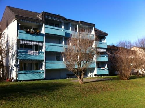 Moderne 4 1/2-Zimmerwohnung, 2. Stock rechts