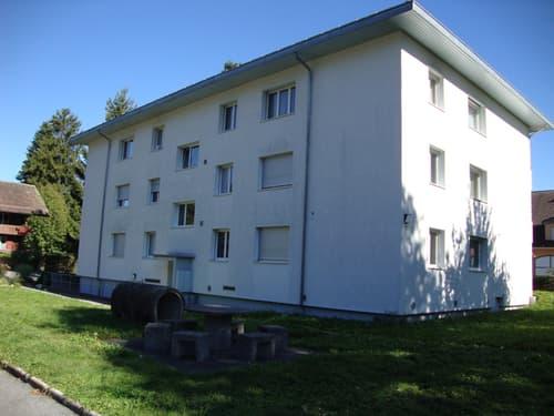 2-Zimmerwohnung, 2. Stock mitte