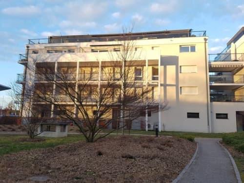 Huningue Au parc des eaux vives, appartement 3 pièces de 66 m²