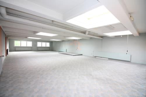 Locaux commerciaux d'env. 400 m²