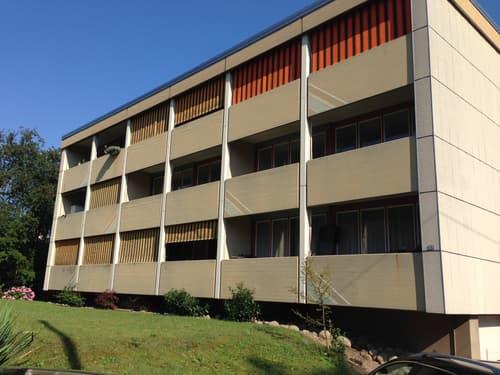 3-Zimmerwohnung in Reiden zu vermieten!