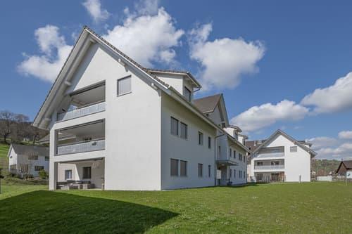 Moderne 2.5-Zimmer-Dach-Wohnung in Bibern