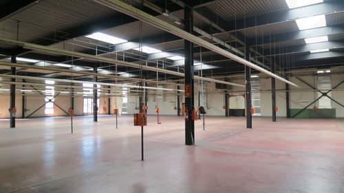Superficie industriale (frazionabile) con altezza 7 m