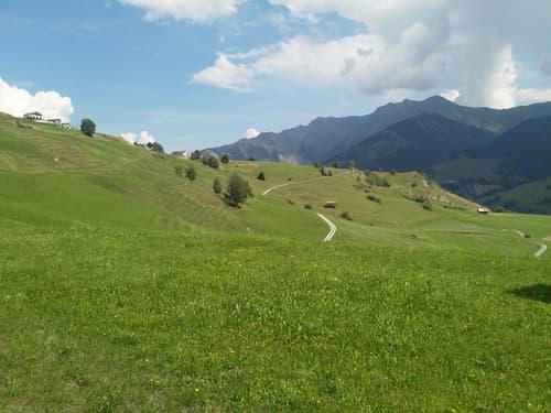 Grosses Baugrundstück an Panoramablick-Lage in Rumein, Val Lumnezia zu verkaufen