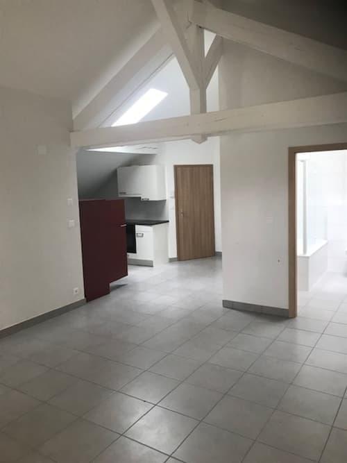 Appartement rénové de 3.5 pièces (1)