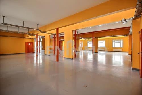 Bâtiment industriel de 980 m2 avec places de parking au coeur de Zimeysa