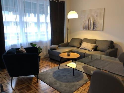 Confortable appartement de 2 pièces entièrement équipé et meublé