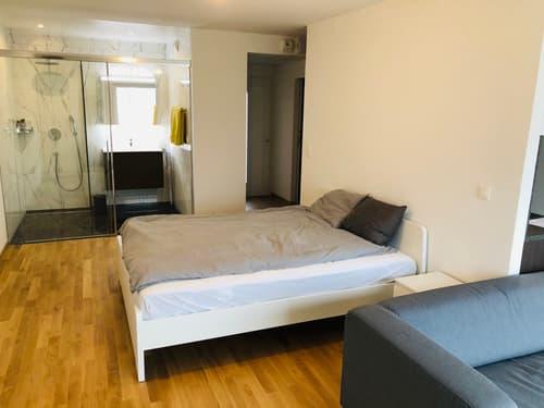 Loft meublé de env. 44 m2