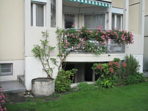 Wohnen im Einfamilienhaus im Zentrum Horw