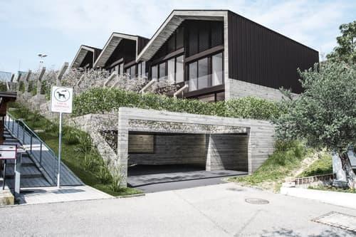 Nuove case a schiera con giardino e ampi locali (1)