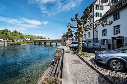 Ein hübsches Stück Schweiz - viel Platz direkt am Rhein ! (1)