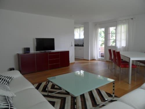 Sehr schöne 4 ½ Zimmer-Ferienwohnung zu verkaufen (1)