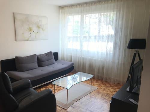 Appartement 3 pièces, lumineux dans une rue calme proche des commodités (1)