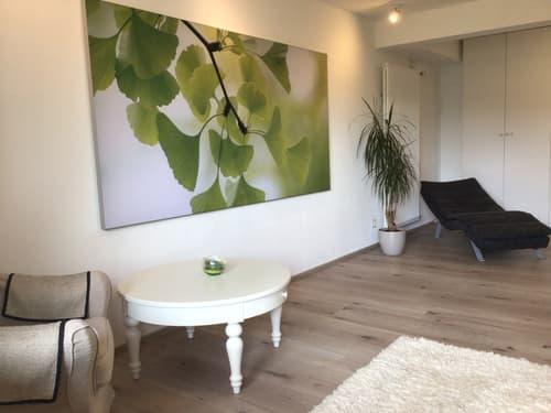 1-Zimmer-Dachstudio und 3 möblierte Zimmer in modern und luxuriös eingerichteter WG
