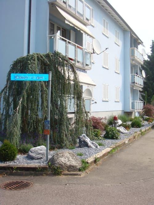 freundliche 3 Zimmerwohnung im 3./obersten Stock an zentraler Lage in Kleindöttingen (1)