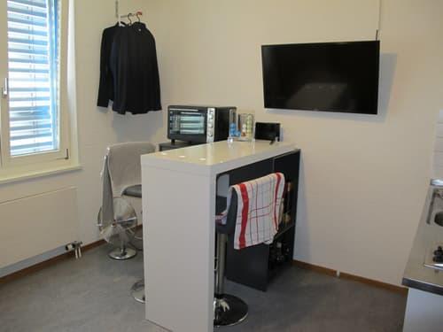 Möbliertes Studio mit eigener Küche und eigenem Badezimmer (Dusche) (1)