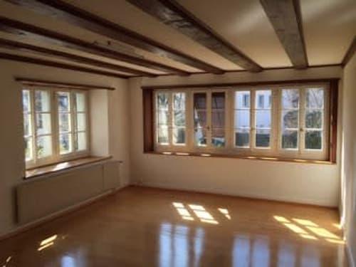Charmante 2.5 Zimmer Wohnung zu vermieten (1)