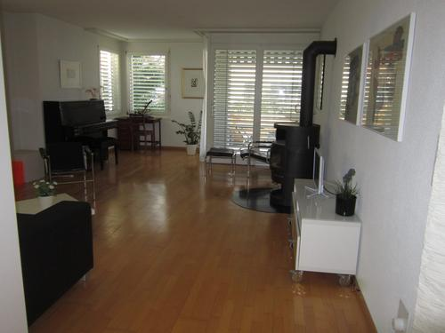 Lovely 3.5 apartment for rent (1)