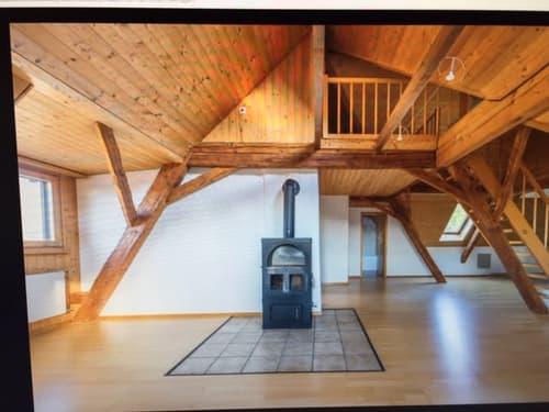 Ruhige und heimelige Dachwohnung (1)