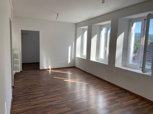 BAISSE DE PRIX : Appartement de 3,5 pces de 145m2 (1)