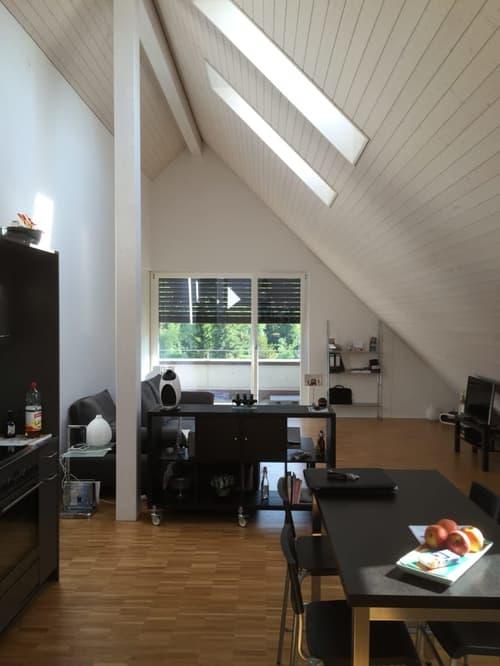 2 1/2 Zimmer Dachwohnung mit Studiobereich (1)
