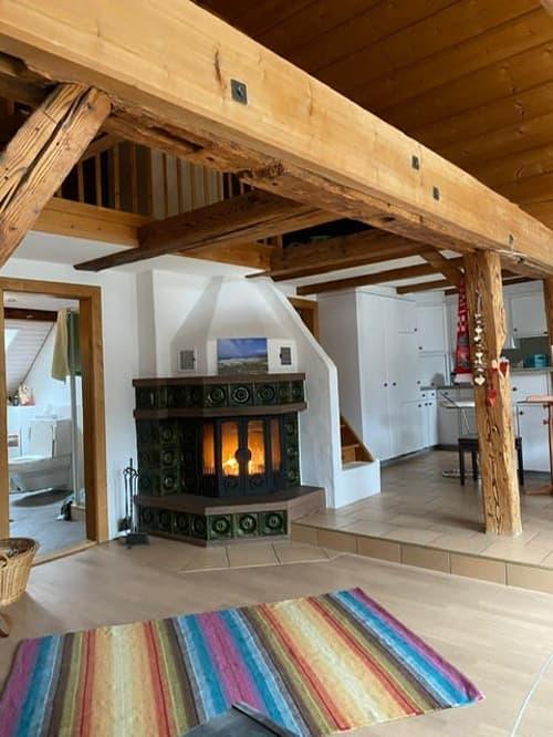 4-Zimmer Dachwohnung mit Galerie (hochwertiger Ausbaustandard) (1)