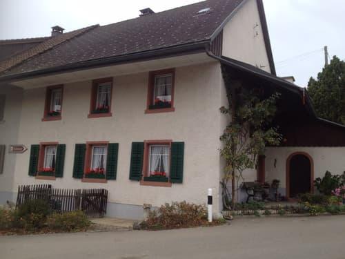 Gemütliches Haus im Kern von Habsburg (1)