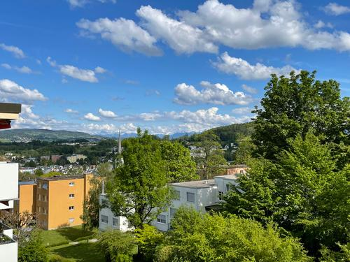 Helle, komfortable 2 1/2-Zimmerwohnung über den Dächern von Adliswil mit fantastischer Aussicht (1)