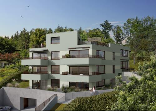 """Projektankündigung: """"waldgarten"""" mit sechs Eigentumswohnungen, ab CHF 860'000.- (1)"""