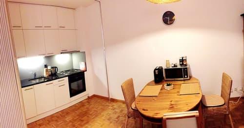 Bern Länggasse, helle möblierte 2 Zi Wohnung (1)