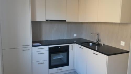 Renovierte 3-Zimmer-Wohnung (1)