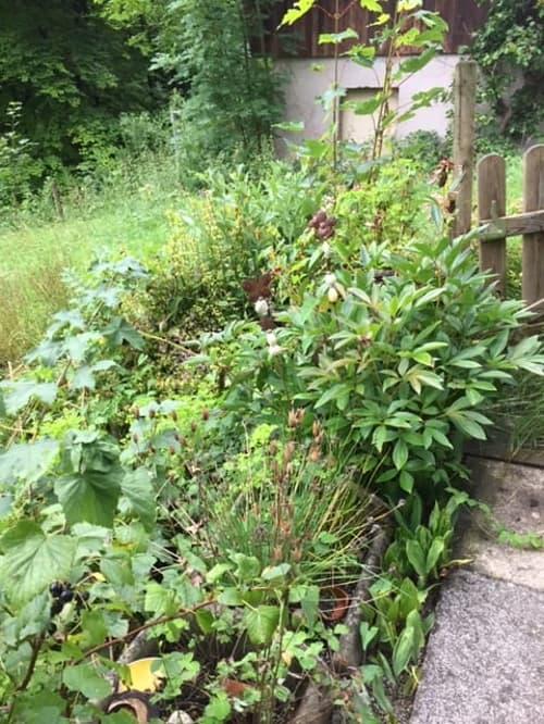 3,5-Zimmer-Wohnung mit schattiger Terrasse und kleinem Garten (1)
