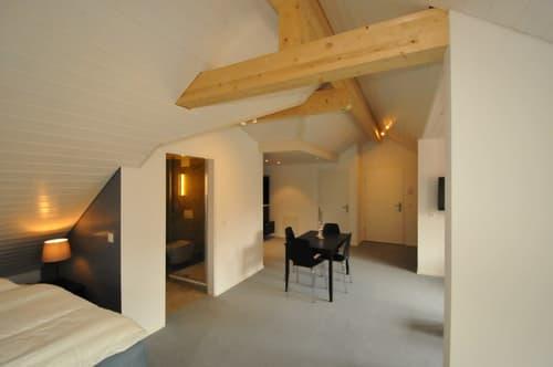 Herrliche Dachgeschoss-Attika oberhalb ETH und Unispital im Loft-Style