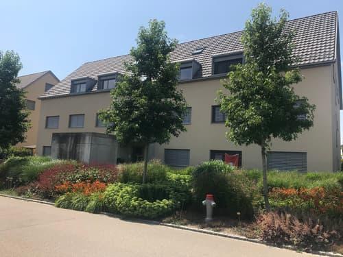 5 1/2 Zimmer Dach-Maisonette-Wohnung (1)