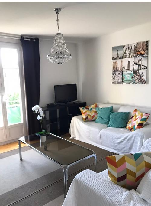 Lausanne Sud Nice furnished 1 september (1)