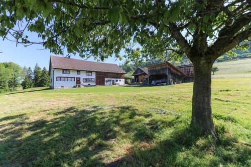 Bauernhaus, Nebengebäude und Landwirtschaftsland, Wernetshausen, Gemeinde Hinwil