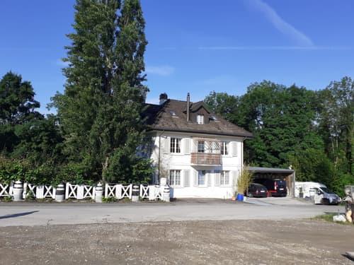 Einfamilien- Mehrfamilienhaus in Schinznach Bad