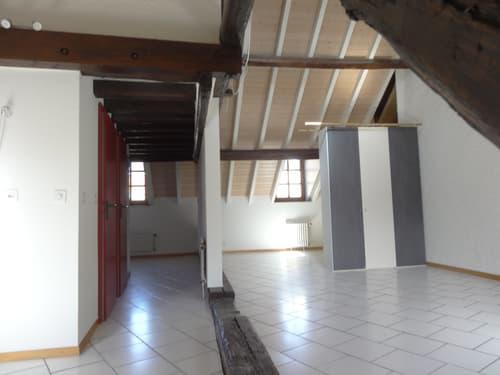 Studio à Carouge GE (1)