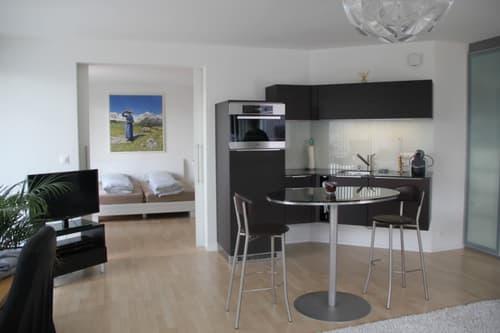 modernes Business-Appartement mit grosser Terrasse (1)