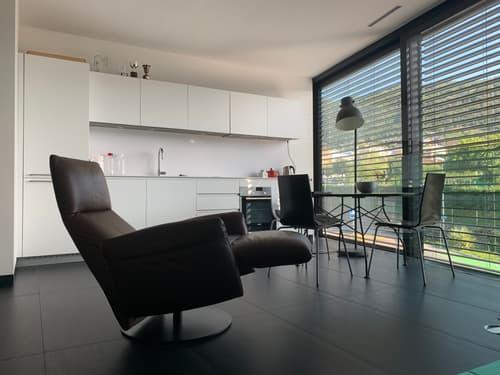 Moderno e luminoso appartamento - 3 locali (1)
