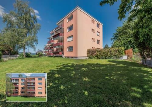 5 1/2  Zimmer   Hochparterre Wohnung  in Ottenbach (1)